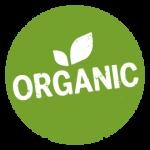 organic traffic และ SEO ติดอันดับ บน Google